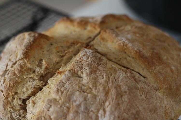 Baking at its Best for Seniors - FREE