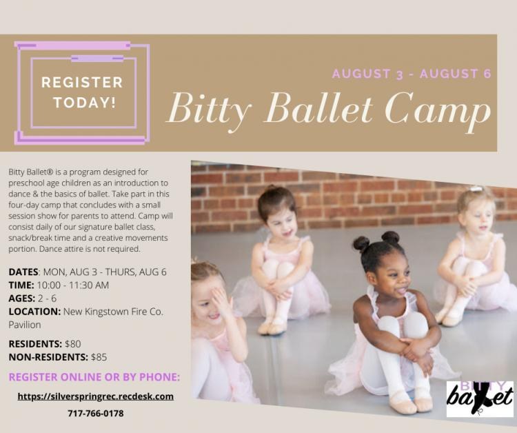 Bitty Ballet Camp