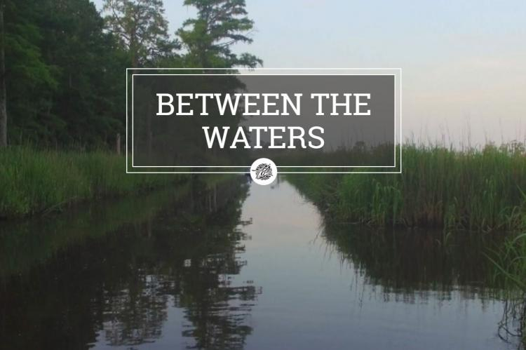 Documentary Film Series continues with Between the Waters.