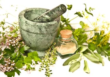Horry County Museum Lecture Series: Agrarian Folklore & Folk Remedies