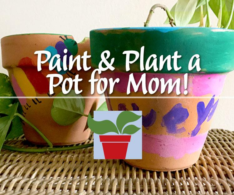 Paint & Plant a Pot for Mom