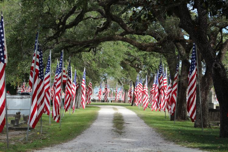Memorial Day Avenue of Flags