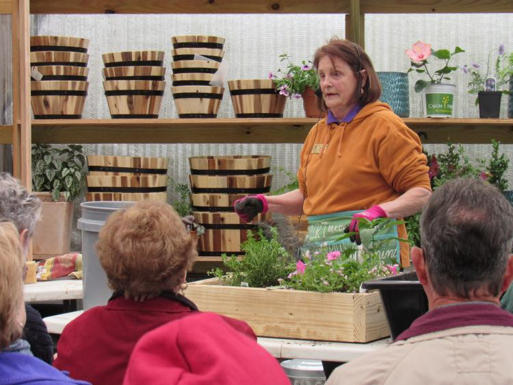 Ask a Master Gardener: Square Foot Gardening