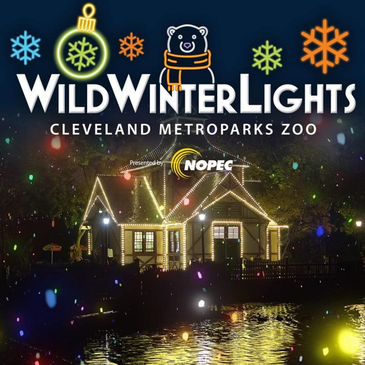 Wild Winter Lights at the Cleveland Metropark Zoo