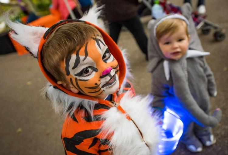 Howl-o-ween at the Akron Zoo