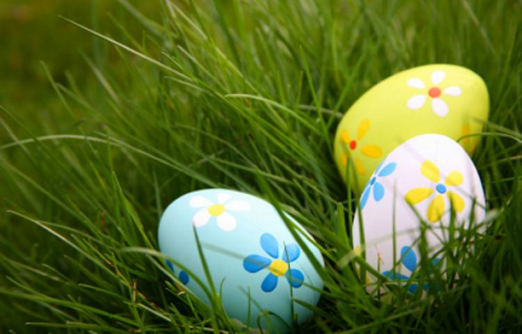 Egg Hunt: Silver Spring Twp.