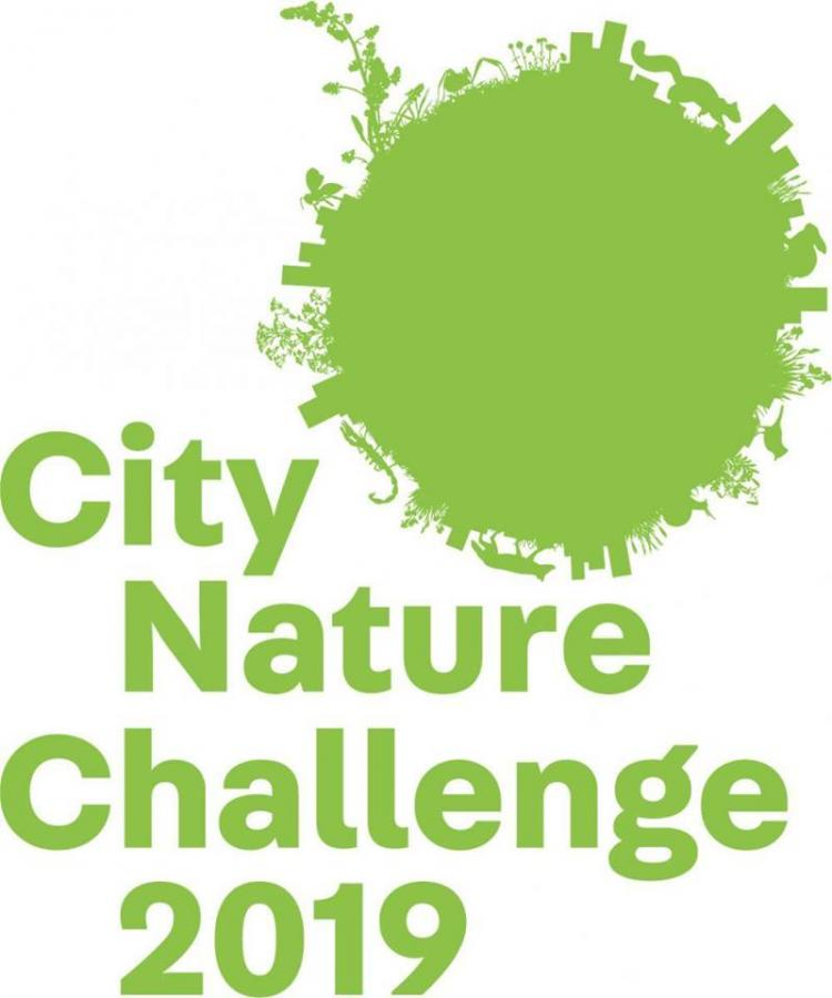 City Nature Challenge 2019 - Union County