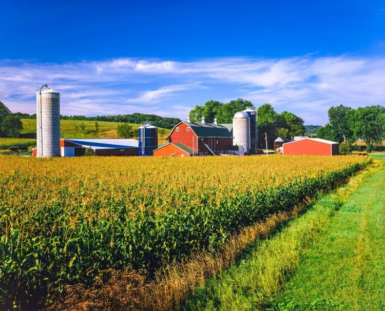 National Farmers Day Sale