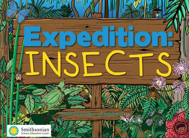 Things to do during quarantine: Learn About Insects from the Smithsonian
