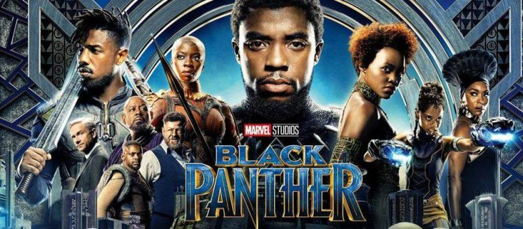 Movie in the Park - Black Panther
