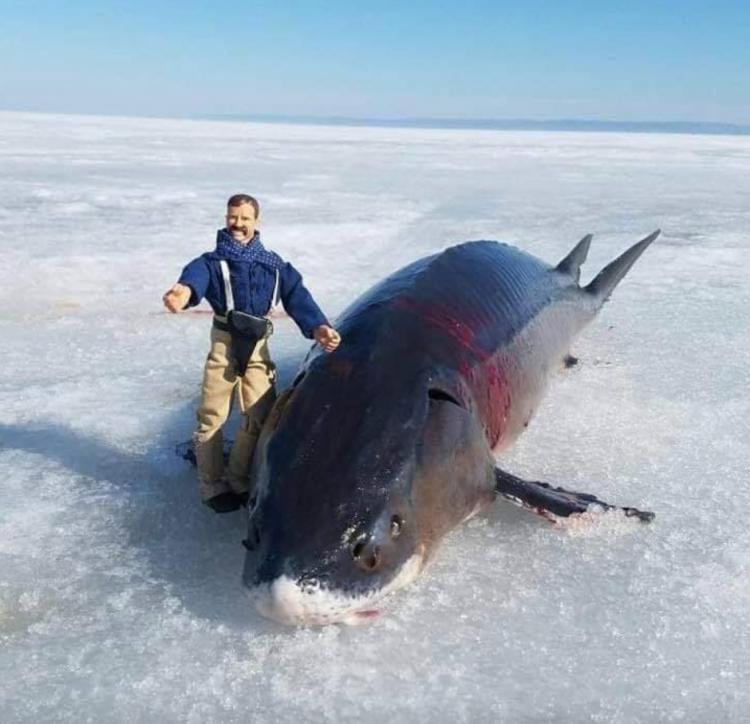 Ice Fishing Derby -