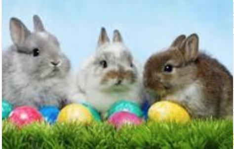 Cancelled - Brunch with the Easter Bunny - Maggianos - Vernon Hills