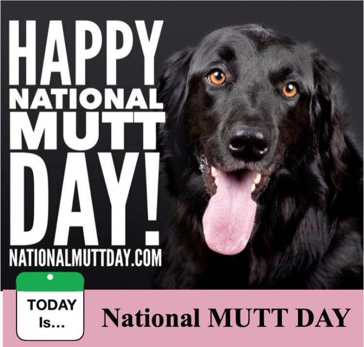 TODAY Is: National Mutt Day