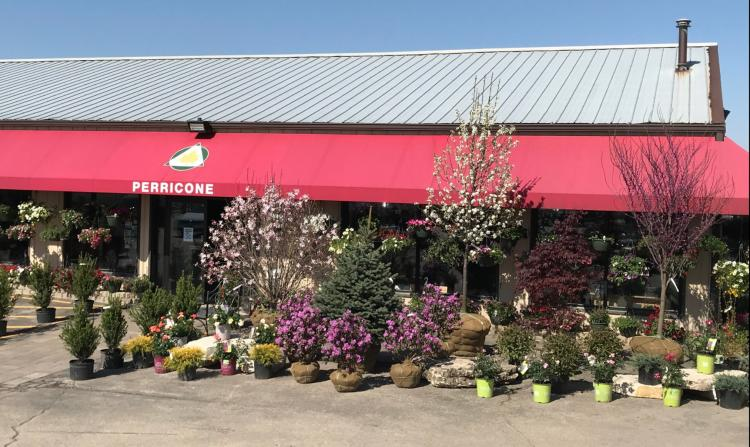 Improve your Yard with Perricone Nursery and Garden Center