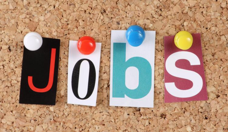 Over 70 JOB LISTINGS in the Local Area