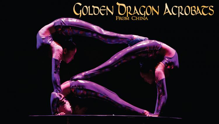 Golden Dragons Acrobats - Special Family Event