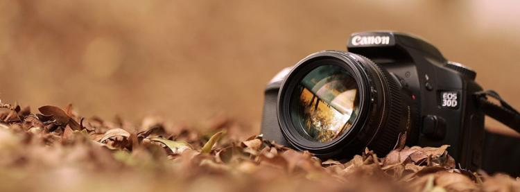 14th Annual Amateur Photography Contest