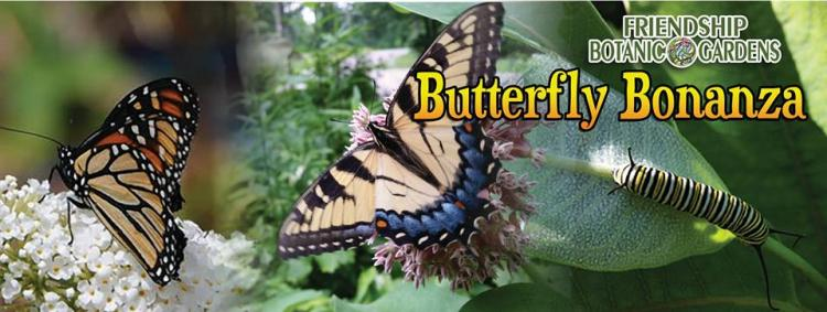 Butterfly Bonanza at Friendship Botanic Gardens