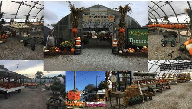 Elzinga Farm for Fall is open down in the greenhouses!