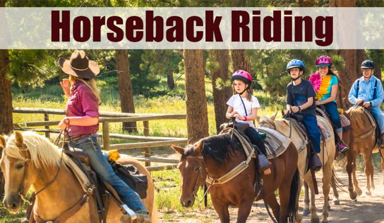Horseback Riding in Northwest Indiana
