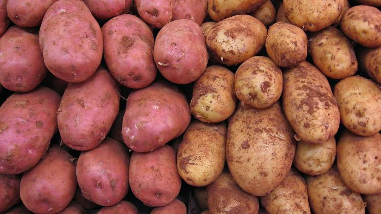 Today is National Tater Day