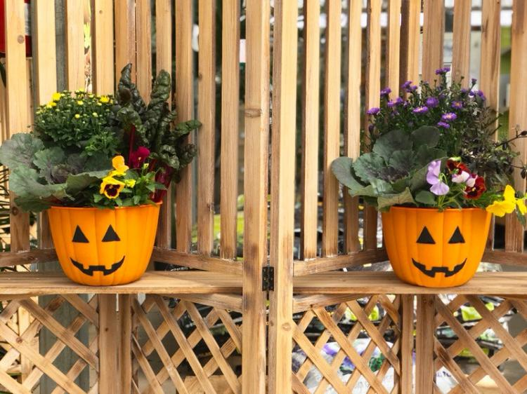 Fall Container Workshop - Alsip Home & Nursery