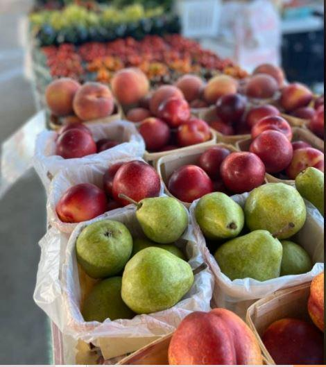 Farmers Market at Bulldog Park in Crown Point
