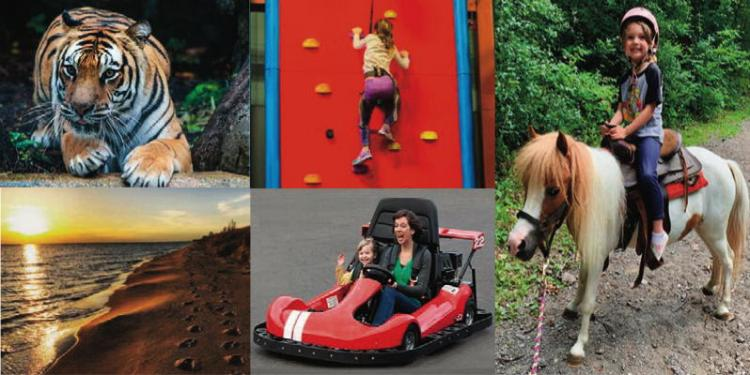 Fun Things To Do Around NWI All Year Long!