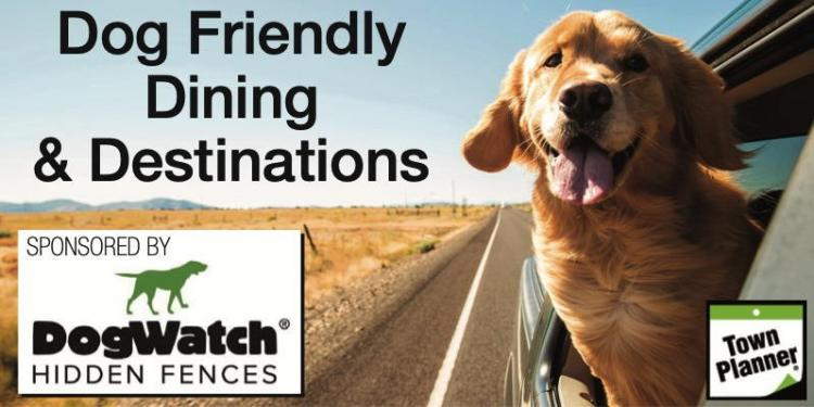 Dog-Friendly Dining & Destinations in NWI 🐾