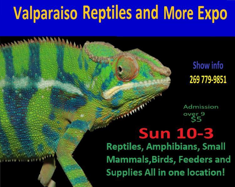 Reptiles & More Expo in Valparaiso