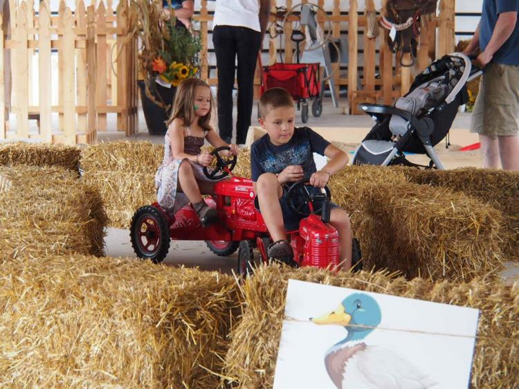 Harvest Tyme Kids Farm at the LAKE COUNTY FAIR in Crown Point