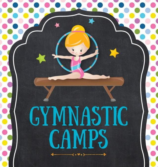 One-Day Gymnastics Camps in Dyer (ages 4-12 girls, 4-8 boys)