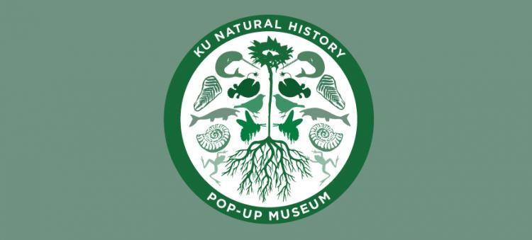 KU NHM Mobile Museum: Natural History Collections in the Community - Great Bend