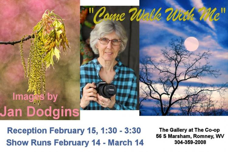 Come Walk With Me, Images by Jan Dodgins Feb 14 - Mar 14