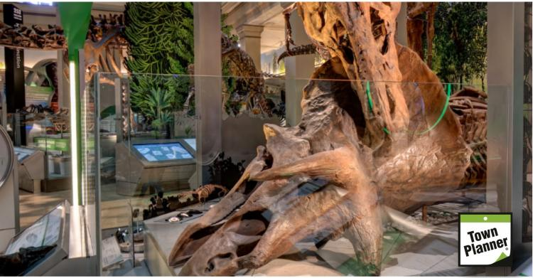 Virtual Tour Smithsonian National Museum of Natural History
