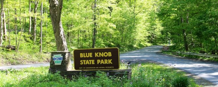 """""""Water Coloring Wildlife"""" Blue Knob State Park"""